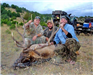 Three men by hunted elk